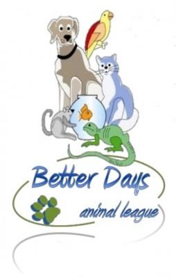 BDALl Double logo