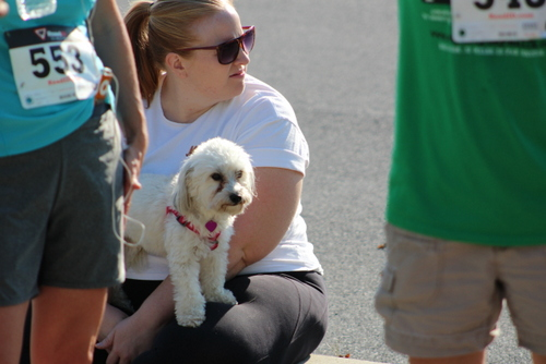 Peace4Paws-2015 (36)