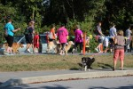 Peace4Paws-2015 (48)