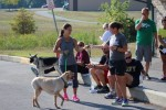 Peace4Paws-2015 (54)
