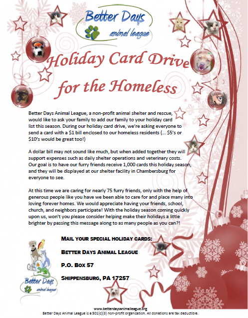 Holiday Card Drive